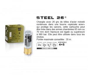 MARY ARM STEEL 26 - PAR 25
