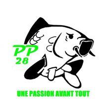 Logo PP28